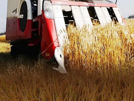 f-combine-harvester